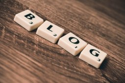 SEO Blogs are Assembled Piece by Piece